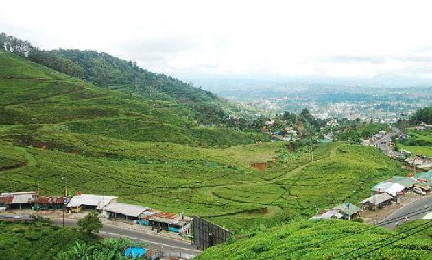 lokasi taman wisata riung gunung puncak bogor